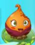 1Sweet Potato first degrade