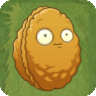 PVZIAT Wallnut