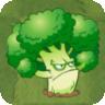 Aggro Brocco2