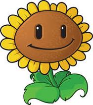 Oldsunflower