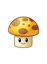 SunShroom