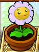 Marigold Lavender2