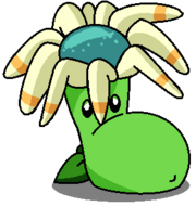 Bloomerangvore