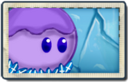 Snow-grape PVZDS Seed