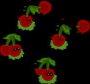 CHERRY Plant