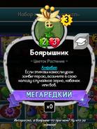 Mayflower Rus