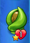 Seedling About Transform