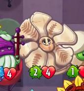 Cro-Magnolia3