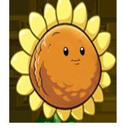 HD Орех из орех