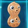 Pea-nut2