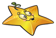 Starfruit23