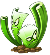 CeleryStalker HD