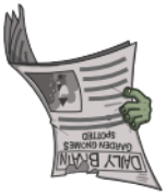 Daily Newspaper1