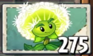 Seed packet Dandelion