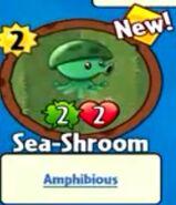 Receiving Sea-Shroom