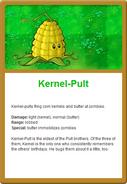 Kernel Online
