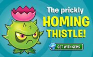 Homing Thistle ad