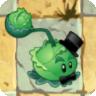 Cabbage-pultUnusedCostume2