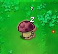 Cardboard puff-shroom sleeping