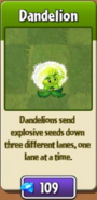 Dandelion Price