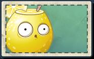 Lemon Seed Packet