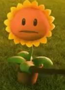 Sun3d2