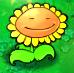 Sunflower Blinking