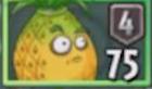 Ананас пакет с семенами