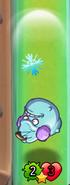 Winter Squash Attacking