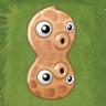 SHpea-nut