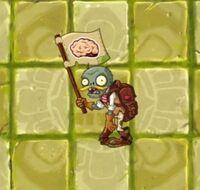 Авантюрист Зомби с флагом