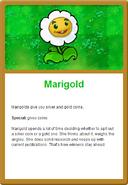 Marigold Online