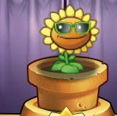 Sunflower 4 costume Online 2