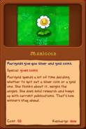 New marigold almanac
