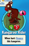 Receiving Kangaroo RiderOld