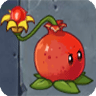 Pomegranate-pult