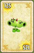 Split Pea Costume Card