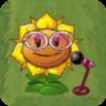 Sunflower Singer2