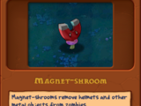 Магнит-гриб
