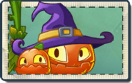 Pumpkin Witch Seed Packet