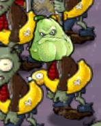 Squash Zombie JTTwest