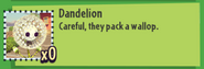 Dandelion Stats