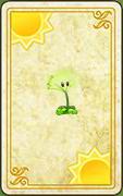 DandelionCard