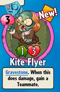 Kite Flyer Got
