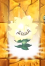 Sunflower Primal about production sun Plant Food