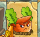 Carrot Missle Idling
