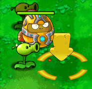 Iron wallnut2