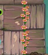 Flowershappy