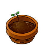Flower-pot HD