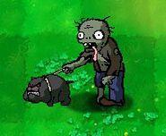 Dog Walker Zombie